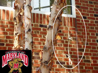 university of maryland noose